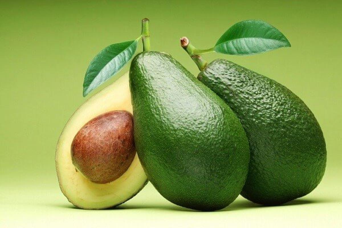 Для съемки на ТВ ищем людей, которые выращивают авокадо